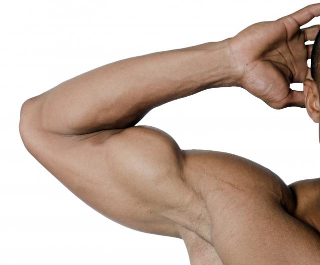 コラーゲンが不足すると筋肉