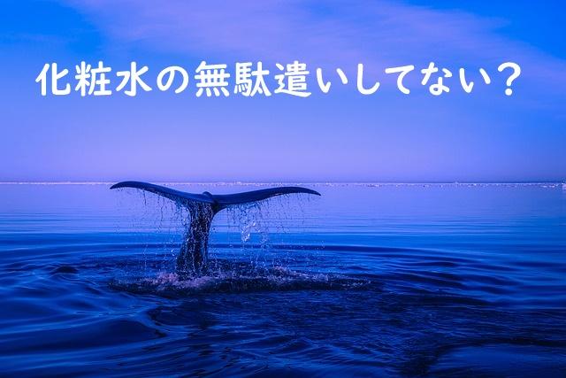 海面に見えるクジラのしっぽ