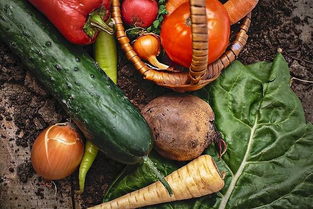 彩とりどりの野菜